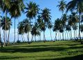 Beachfront Lots For Sale In Project At Playa Coson